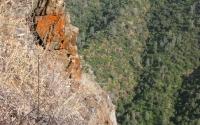 Tuolumne River Gorge